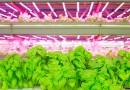 最新アグリテックが活かされる室内農業・植物工場まとめ