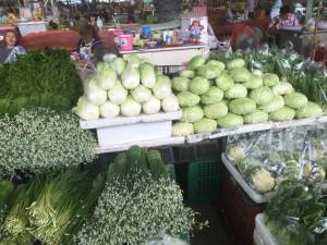 冷涼な気候で育つキャベツや白菜も発見。ただ日本産より少し小ぶりだ。
