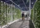 2017年の室内農業には何がもたらされるか?