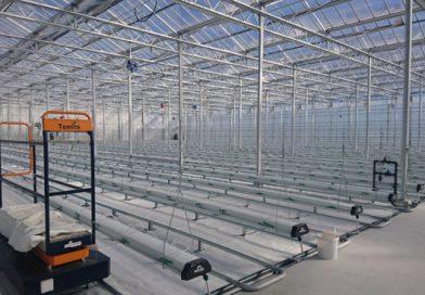 【日本初】電解水設備を導入したオランダ式大型ハウスで園芸農業モデル施策始動
