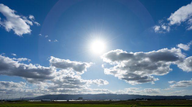 農業参入フェア、農林水産省が東京・大阪・名古屋で開催決定